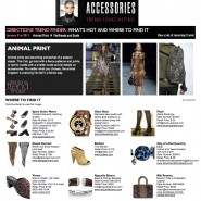 Accessories Online Full Screen - Feb 1